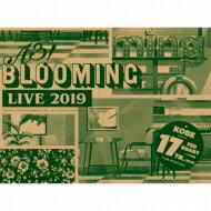 ミュージック, その他  A3! () A3! BLOOMING LIVE 2019 DVD