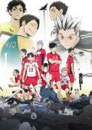 アニメ, オリジナルアニメ  OVA!! VS DVD