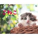 こねこ カレンダー 壁掛け 2021 B4ワイド / 関由香 【本】