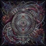 邦楽, インディーズ  NOCTURNAL BLOODLUST The Wasteland CD