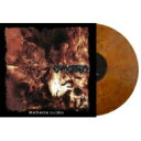 【送料無料】 Exmortem / Berzerker Legions (Marble Orange Vinyl) 【LP】