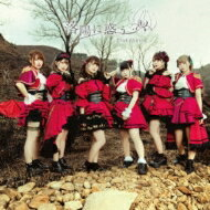 PinkySpice/落陽に惑う【TypeC】【CDMaxi】