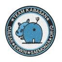 カバさんチーム