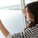 【女性の一人暮らし人気商品】ウィンドウフィルムを探すなら!防...