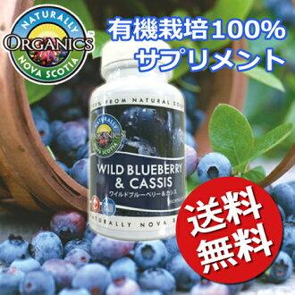 [要點10倍][郵費免費]新斯科捨省藍莓&黑加侖子膠囊/有機肥耕作/JAS認定/有機/香草/[RCP]
