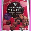手作りお菓子キットバレンタインキャラメル風味の生チョコセット手作りお菓子キットプレゼントパーティに