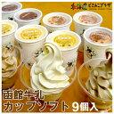 産地出荷「函館牛乳 カップソフト 9個入」冷凍 送料無料【3