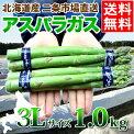 【送料無料】北海道産アスパラ1.0kg(3Lサイズ限定)【アスパラ1kg/あすぱら/アスパラガス/グリーンアスパラ/北海道/北海道直送/お取り寄せ/ギフト/ご自宅用/バーベキュー】