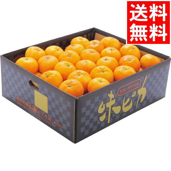 フルーツ・果物, みかん 10!(26() 1:59) JA (5kg) M