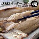 北海道の魚・魚介