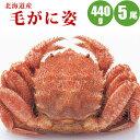 北海道産毛ガニ440g×5尾 ほっけ一夜干し2尾付 ギフトに最適な毛ガ...