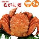 お中元 送料無料 北海道産毛ガニ500g×2尾 ギフトに最適...
