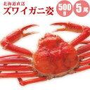 【かに カニ 蟹】 ズワイガニ姿500g×5尾 【送料無料】...