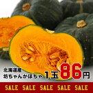 北海道千歳市みなみ農園産坊っちゃんかぼちゃ
