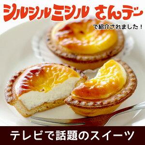シルシルミシルさんデーで紹介されました!北海道の素材にこだわって丁寧に焼き上げたチーズタ...
