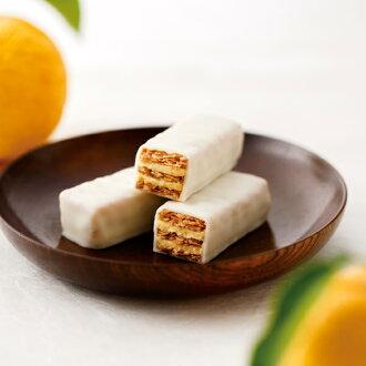 柑橘 (在冬天) 六件禮物禮品贈品套房糖果的石屋石屋京都精華大學美冬季設置禮物千層酥巧克力巧克力綠茶
