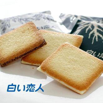 石屋製菓白い恋人24枚入ホワイト:12枚ブラック:12枚