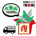 【北海道ふっこう】海の恵みな「復」袋 送料込み10,000円 北海道物産店 北海道支援 北海道応援