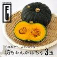 ファームウメムラ 坊ちゃんかぼちゃ3玉 ハロウィン お菓子 【北海道お土産探検隊】