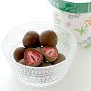フリーズドライの甘酸っぱい苺をチョコレートでコーティングした六花亭の人気商品!六花亭 スト...