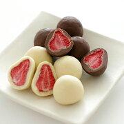 ストロベリー プチギフト プレゼント スイーツ チョコレート フリーズ フルーツ