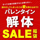北海道お土産探検隊バレンタイン愛の解体SALE福袋