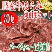 ハラミUS産牛はらみ焼肉用カット/焼肉はらみさがり冷凍/冷凍A
