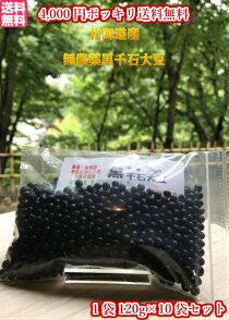北海道産無農薬黒千石大豆120g10袋セット
