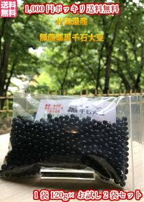 北海道産無農薬黒千石大豆120g2袋
