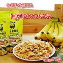 バナナチップス 【送料無料】OWLTREE フィリピン 無添加 美容 健康 非常食 4袋分(60g×4袋) サクサク