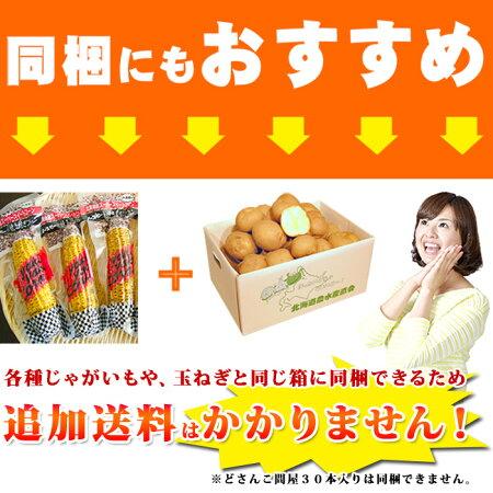 北海道産/スイートコーン/焼き焼きコーン/レトルト/同梱におすすめ/真空パック