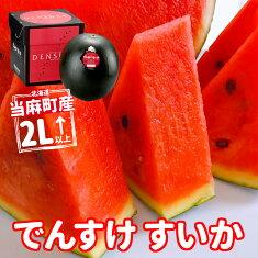 北海道当麻町産でんすけスイカ2L〜正規品