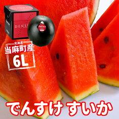 北海道当麻町産でんすけスイカ6L正規品