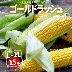北海道産黄色とうもろこしゴールドラッシュ