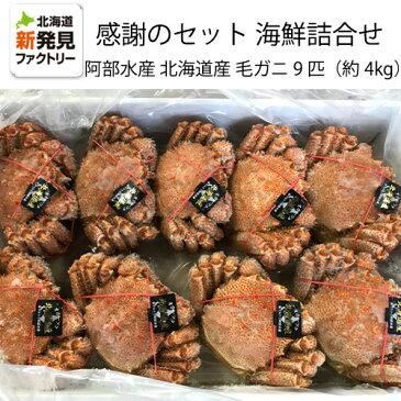 ご支援に対する感謝のセット北海道産海鮮詰め合わせ毛ガニ9匹約4kg【送料無料】