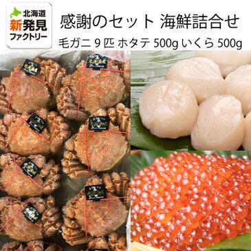 ご支援に対する感謝のセット北海道産海鮮詰め合わせ毛ガニ9匹約4kgいくら約500gほたて約500g【送料無料】