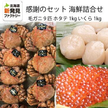 ご支援に対する感謝のセット北海道産海鮮詰め合わせ毛ガニ9匹約4kgいくら約1kg(500g×2箱)ほたて約1kg(500g×2箱)【送料無料】