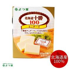 よつ葉乳業北海道限定バター125g