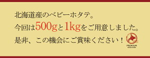 北海道小樽産ベビーホタテ500gボイル冷凍ホタテほたて帆立北海道産小樽名産業務用シチューパスタお鍋