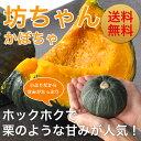 【メディアで話題】北海道産 坊ちゃんかぼちゃ3kg(5〜8玉...