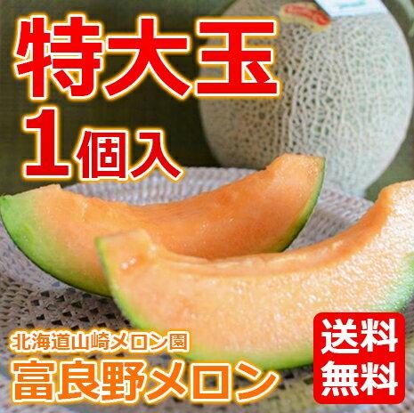フルーツ・果物, メロン  (2kg) 1 1