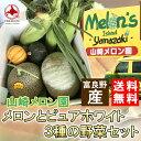 山崎メロン園 富良野 産地直送メロンとピュアホワイトと3種の野菜セットメロン:赤玉 とうもろこし:ピ...