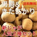 ジャガイモ(きたあかり/10kg)