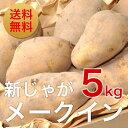 【訳あり】新じゃがいも「メークイン」5kg北海道栗山町「湯地の丘自然農園」直送※送料無料【九州・沖縄を除く】北海道 ジャガイモ 5kg 送料無料 じゃがいも 北海道 新じゃが 新ジャガ メークィーン馬鈴薯 芋 贈答品 ギフト 業務用