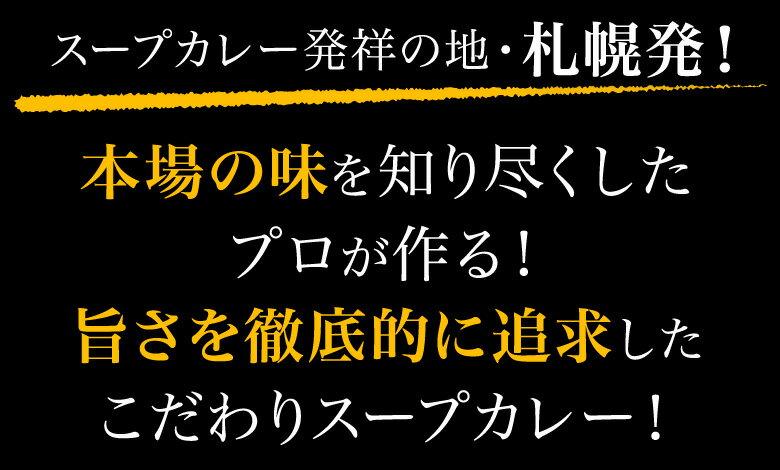 送料無料3種から選べる札幌極みスープカレー2食豚角煮・チキン・ホタテ北海道カレーレトルト1000円ポッキリ