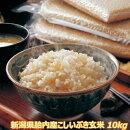 新米30年産新潟産減農栽培こしいぶき10kg玄米一等米コシイブキ【送料無料】【白米取り寄せ】