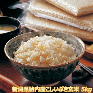 令和2年産 新潟産こしいぶき 5kg 玄米 【送料込み】食味Aランク (ほぼ 無農薬) 一等級【色選別済】 産地直送