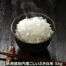 新米30年産新潟産減農栽培こしいぶき5kg白米一等米コシイブキ【送料無料】【白米取り寄せ】
