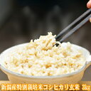 令和2年産 新潟産特別栽培米コシヒカリ 玄米 3kg【玄米 送料無料】(玄米 新潟産)農薬節減(7割減) 有機肥料栽培米・残留農薬ゼロ(検査済) 一等米