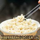 30年産新潟県産特別栽培米コシヒカリ10kg